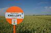 KWS baut mit der Übernahme von Momont die Weizenzüchtung in Frankreich aus. Foto: Peter Gaß