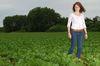 Unkraut fördert selten den Nematodenbefall von Zuckerrüben. Foto: Peter Gaß