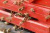 Bienensterben kann viele Ursachen haben. Foto: Peter Gaß