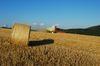 Getreidestroh wird zunehmend energetisch verwertet. Foto: Peter Gaß