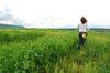 Die Ackerbauer haben beim Greening viel gelernt. Foto: Peter Gaß