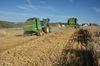 8 bis 13 Millionen Tonnen Getreidestroh fallen jährlich an. Foto: Peter Gaß