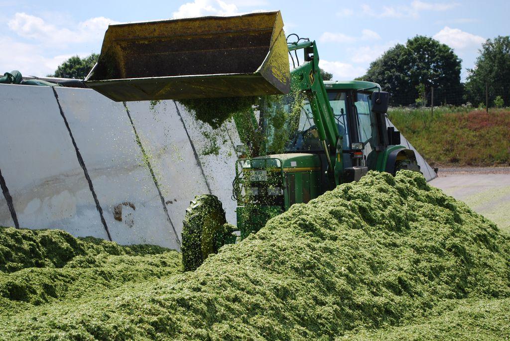 Wirtschaftlichkeit und Transparenz der Biomasseproduktion nachhaltig steigern