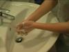 Caprice gegen Grippeviren
