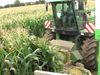 lws37: Wie wird Mais geerntet?