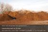 s01-01-kompost-dampfen-platz-gut.jpg