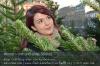 s02-02-kp-weihnachtsbaum-entscheidung-gut.jpg
