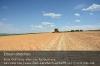s10-01-clexion-540-erbsen-frei-front-panorama-gespann-gut.jpg