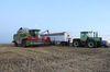 Weizenernte mit CLAAS DOMINATOR
